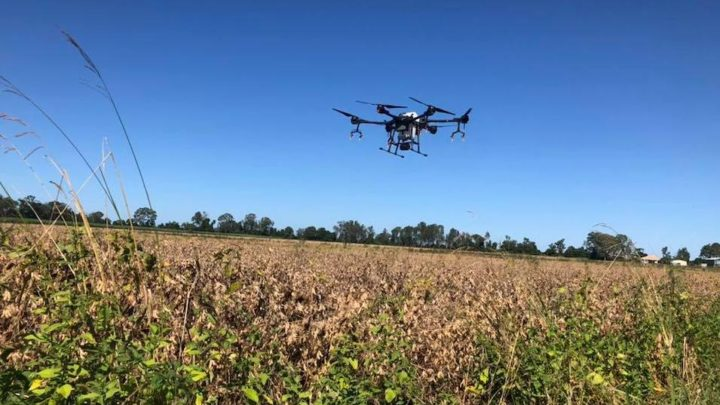 DRONES: NEW TECHNOLOGIES AT THE SERVICE OF AGRICULTURE
